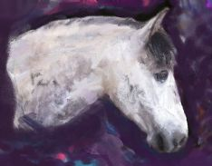 Horse Portrait Painting Example